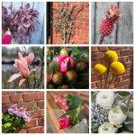 Frischblumen und Zweige